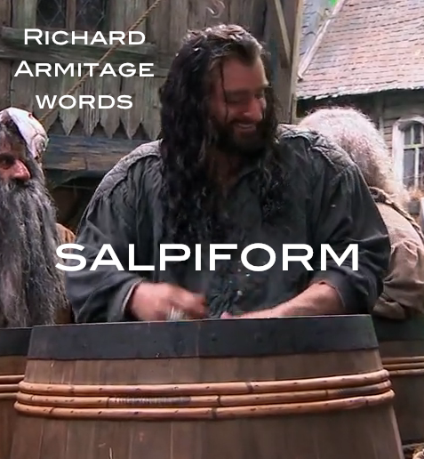 salpiform: barrelshaped. Richard Armitage as Thorin Oakenshield in BTS extras for The Hobbit: The Desolation of Smaug.